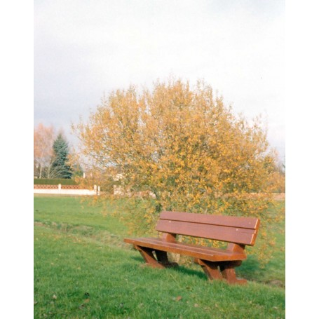 Banc Forestier